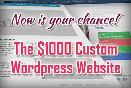 $1000 Custom Website!